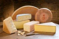 Один из видов белковой диеты — сырная диета