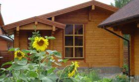 Дача как место для удовольствия и возвращения к истокам
