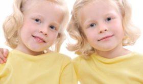 Близнецы – двойное счастье родителей