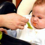 Малыш растет: чем кормить?