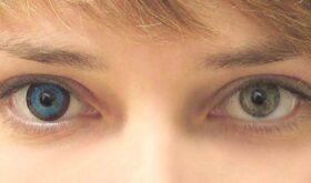 Цветные линзы для глаз и их виды