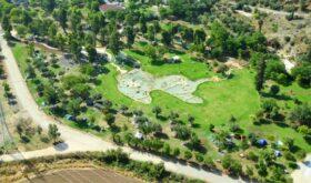ВИзраиле начали открываться парки изаповедники