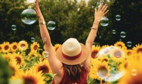 Лето в городе: 20 интересных идей