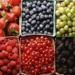 Ароматная малина, спелая клюква и другие ягодные культуры от Greensad для ваших детей