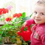 Детский сад и ребенок: все за и против