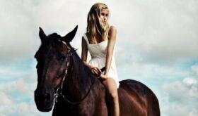 Вся правда о лошадином шампуне